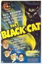 Black Cat, The cover